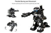 Mini Fighting RC Robot