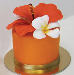 The Hibiscus Cake