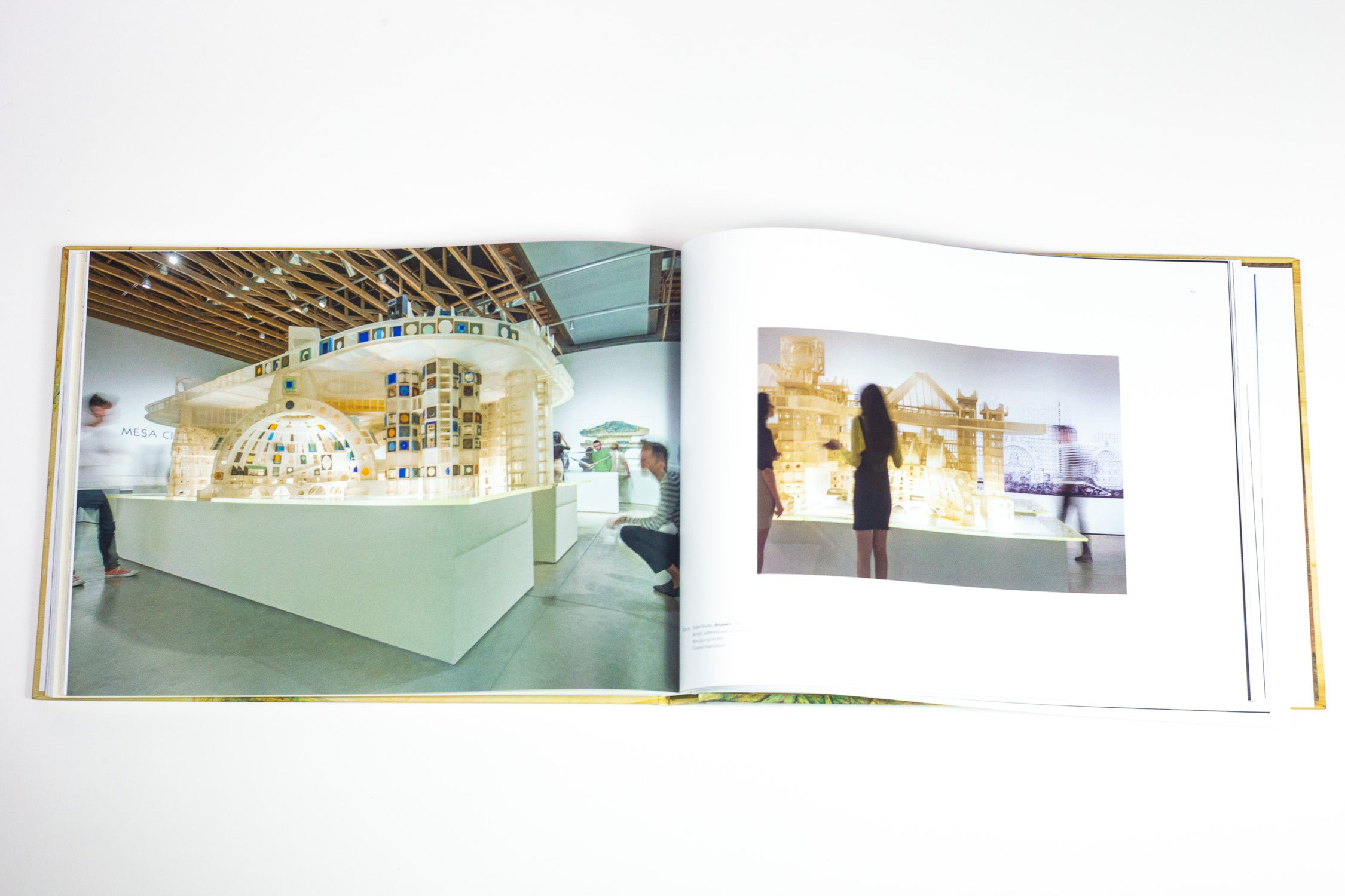 SMOCA Catalog: The City Is Nature