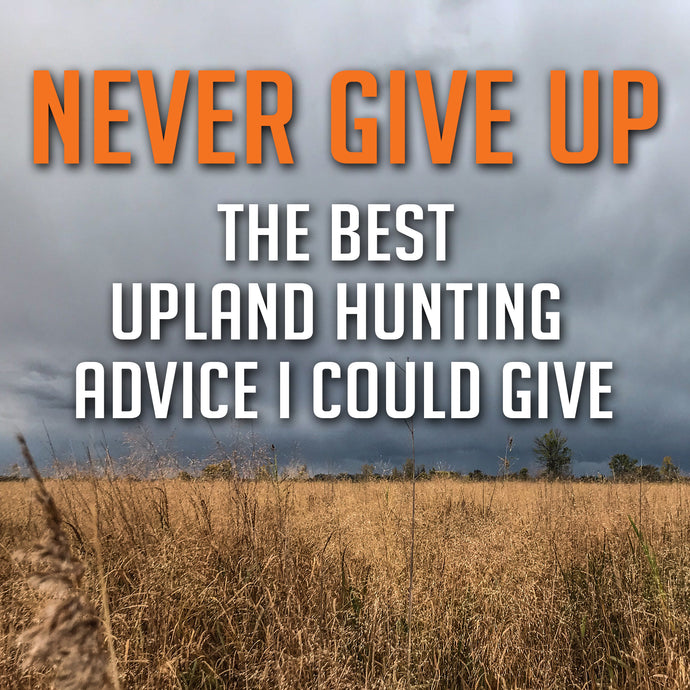 The Best Upland Hunting Advice I Could Give