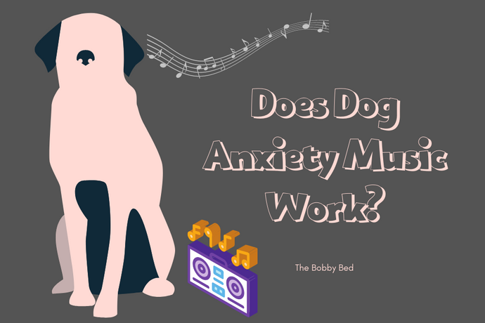 Does Dog Anxiety Music Work? (Yes Music for Dogs is a Thing)