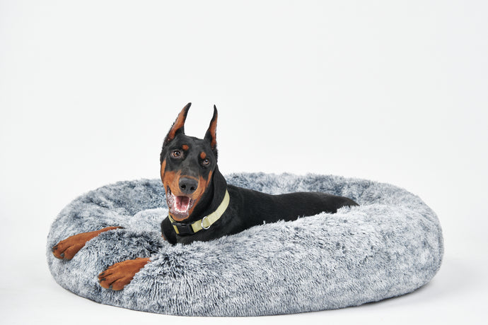 Calming Donut Bed