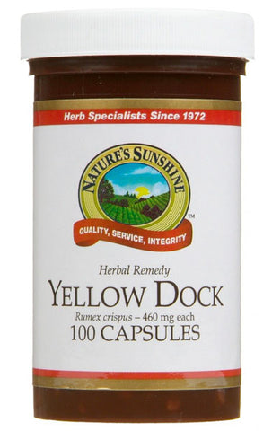 yellow-dock