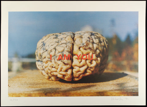 """I am you"", 1994. Offset by Les LEVINE"
