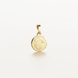 Recreational Studio Solid Gold Round Pisces