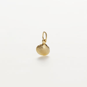 Recreational Studio Solid Gold Shell Small