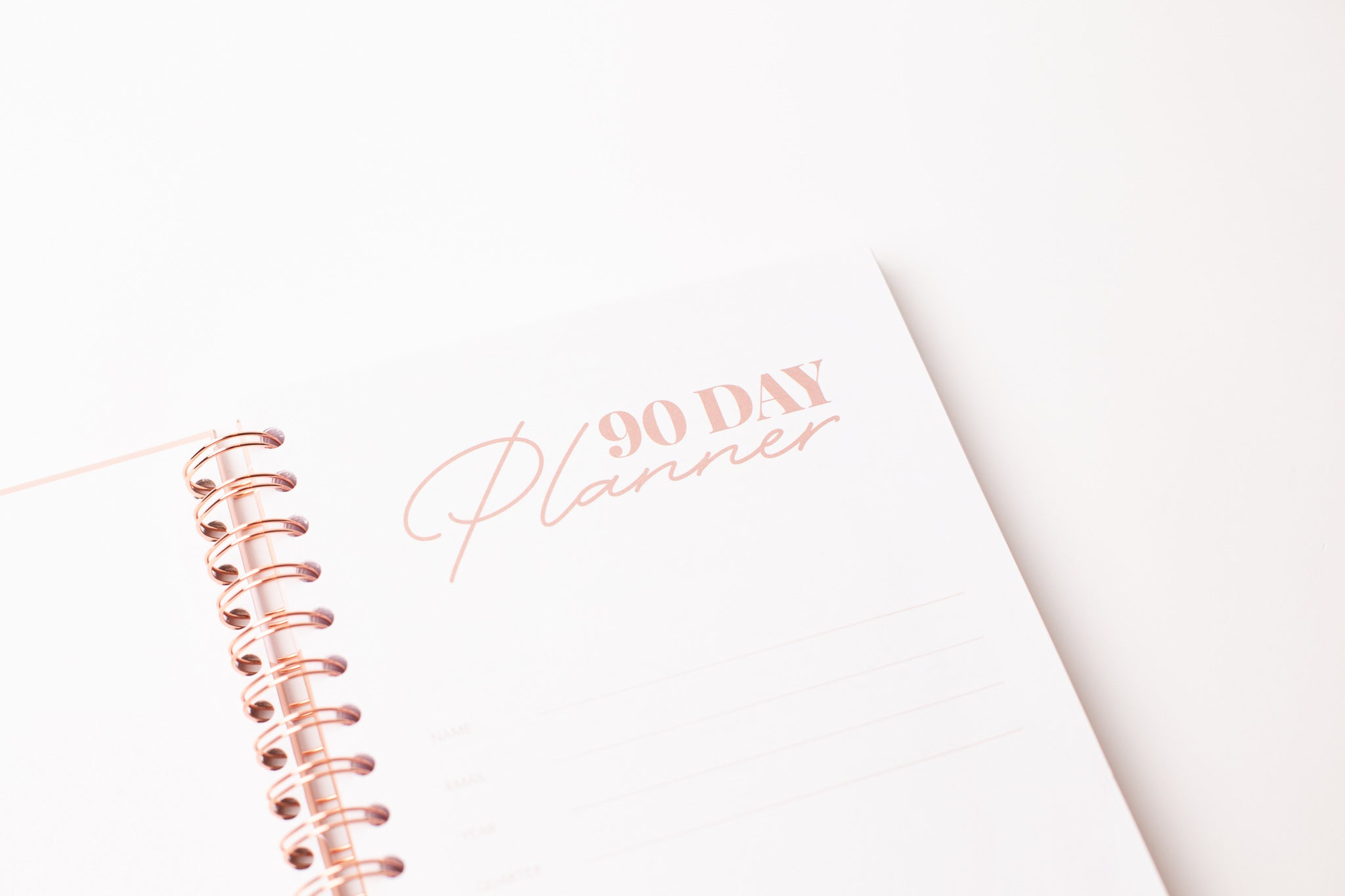 AchievHer x Prickly Pear 90 Day Planner
