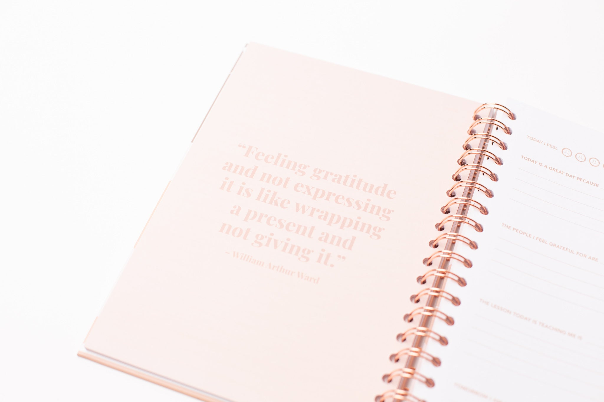 AchievHer x Prickly Pear Gratitude Journal