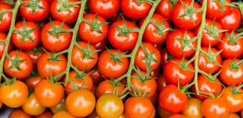 Carry Tomaten 3kg