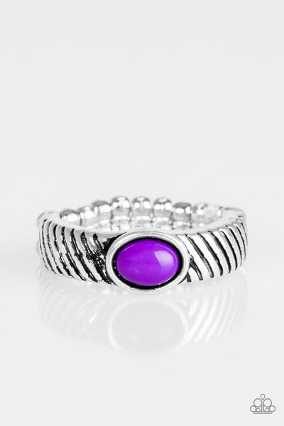Zebra Zen - Purple - JewelTonez Jewelry