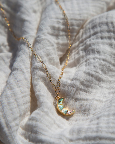 Capricorn [DEC 22 - JAN 19] — Astrological Necklace
