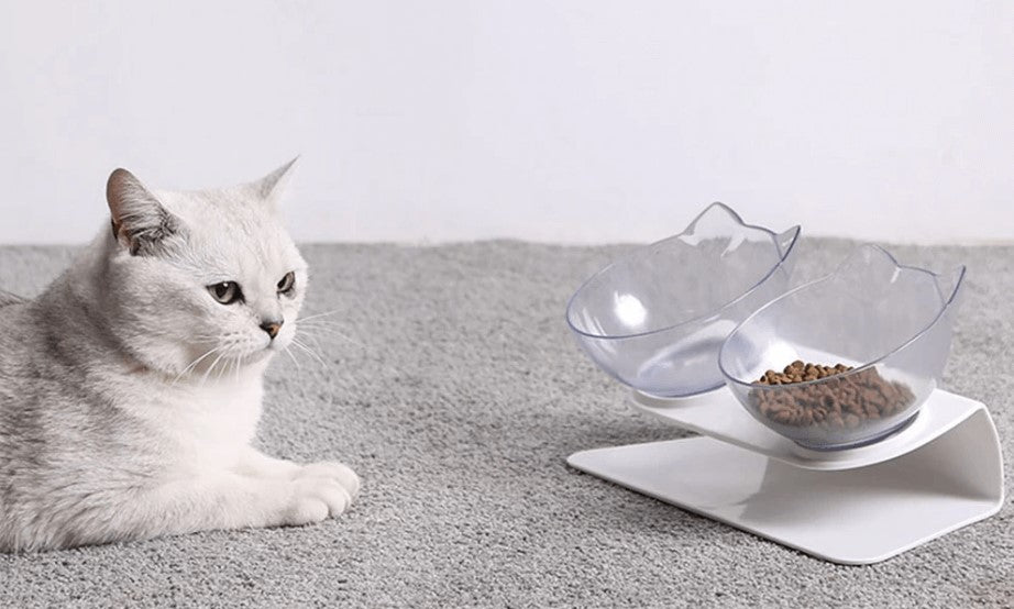 Anti-vomiting-cat-bowl-Posture cat bowl-orthopedic-cat-bowl-raised-cat-bowl-elevated-cat-feeder-cat-bowls-with-stand-large-cat-bowl