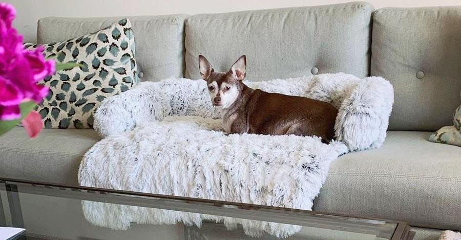 Calming Couch Heaven dog bed sofa protector