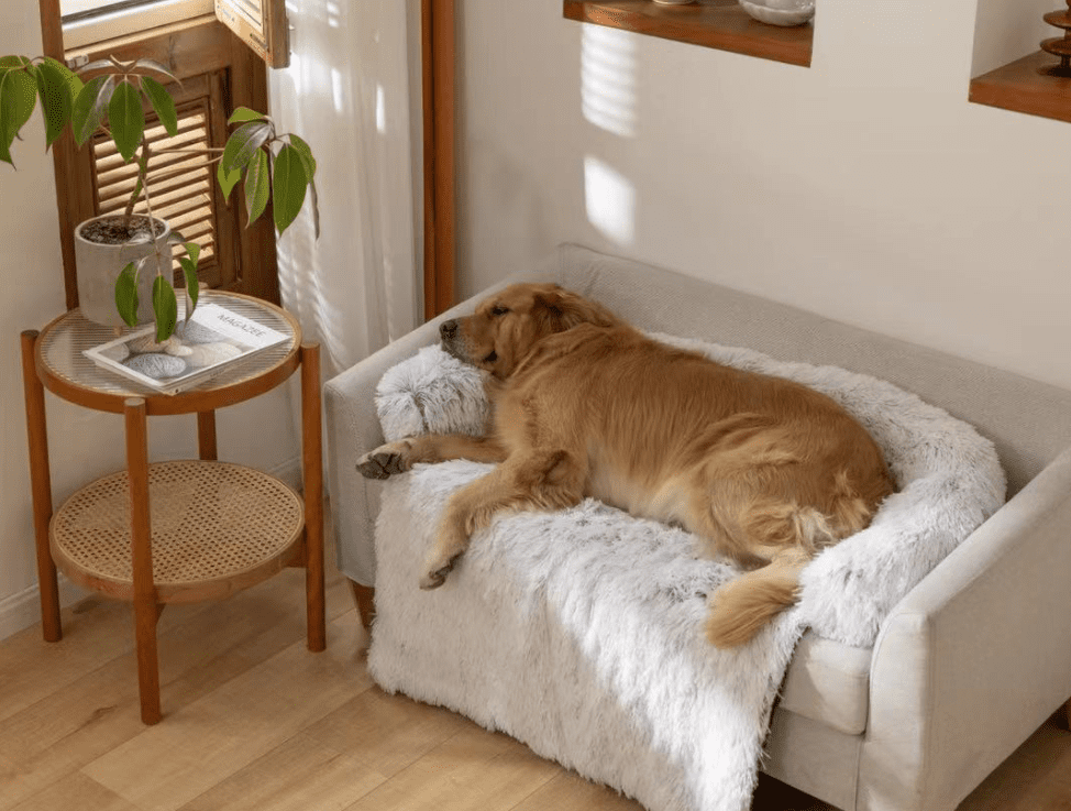CALMING-COUCH-HEAVEN-sofa-dog-bed
