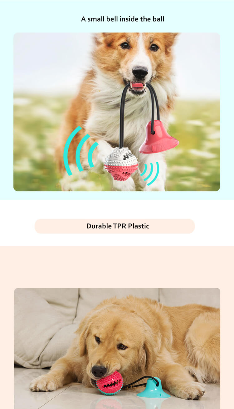 Suction-Cup-Dog-Toy-Dog-Chew-Toys-Puppy-Dog-Training-Treats-Teething-Rope-Toys