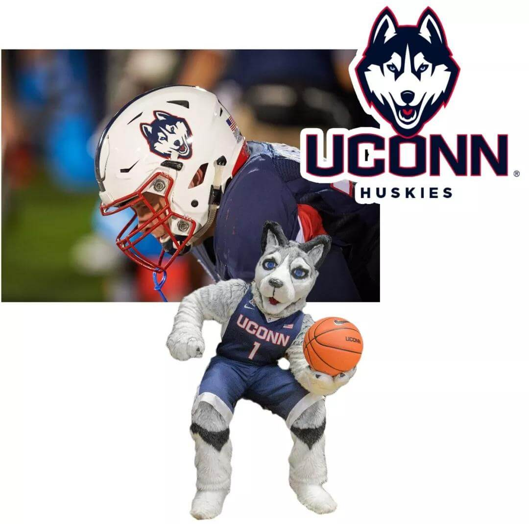 University of Connecticut mascots husky