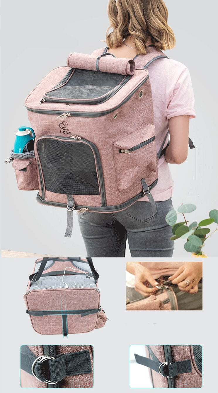 aipaws cat backpack