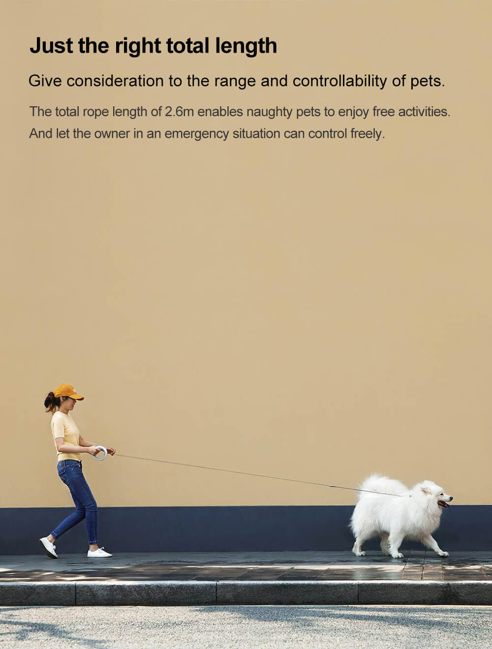 dog leash length