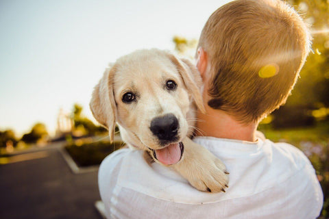 man cuddle cute dog