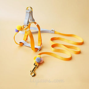 Aipaws-Candy-dog-harness-dog-harness-for-small-dogs-soft-dog-harness-and-leash-orange
