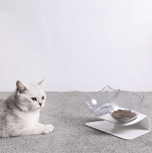 Tilted Cat Bowl