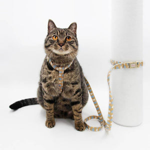 Arkika-Cat-Harness-and-Leash-travel-cat-harness-luxury-cat-harness-soft cat-harness-japan-japanese