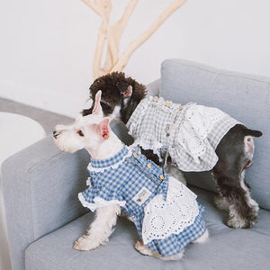 Dog-plaid-dress-dog-Lattice-dress-dog-maid dress