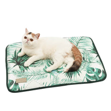 Load image into Gallery viewer, 3D Print Summer Ice Silk Pet Dog Cooling Mat For Cats Dogs