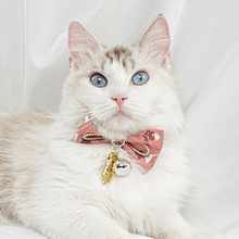 Load image into Gallery viewer, Cat-bow-tie-collar-cat-bow-tie-kitten-bow-tie-collar