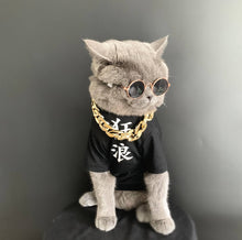 Load image into Gallery viewer, gangster cat costume for halloween