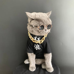 gangster cat costume for halloween