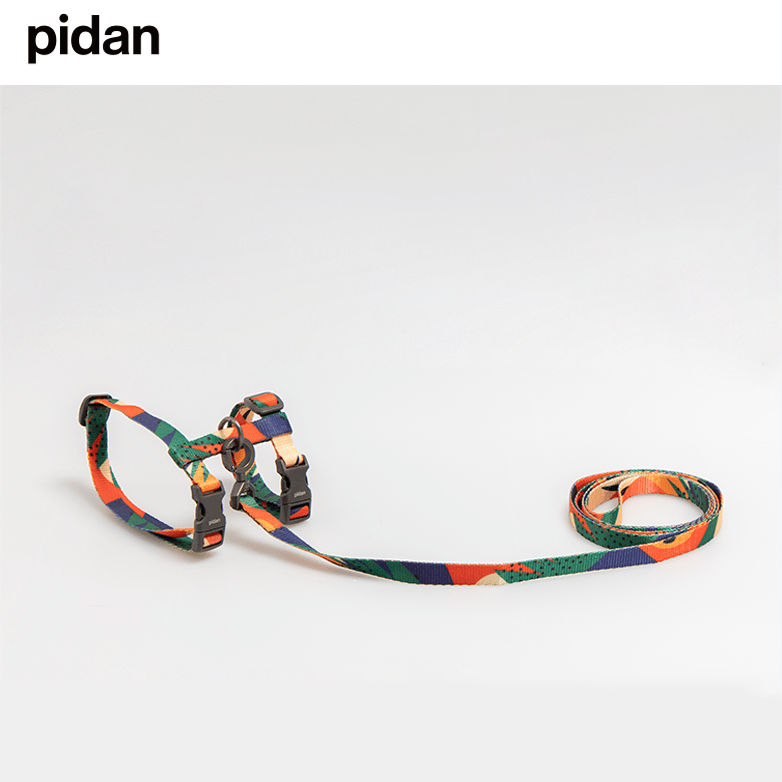 pidan Cat Harness and Leash Set escape proof cat harness
