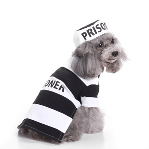 Prisoner Dog Costume for halloween
