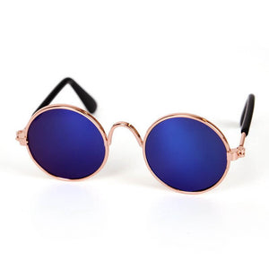 sunglasses for cat blue