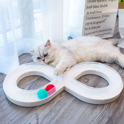 Cat Ball Puzzle Track Revolving