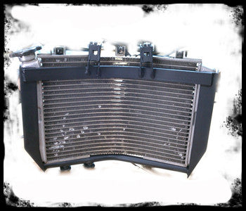 Racing 905 Radiator Armor