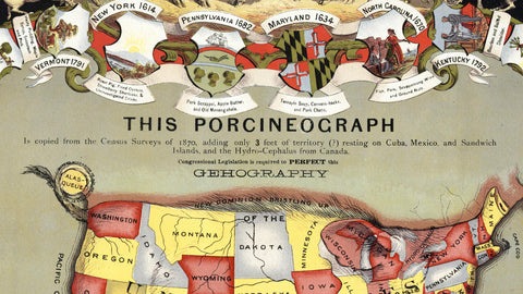 Porcineograph of the USA 1876