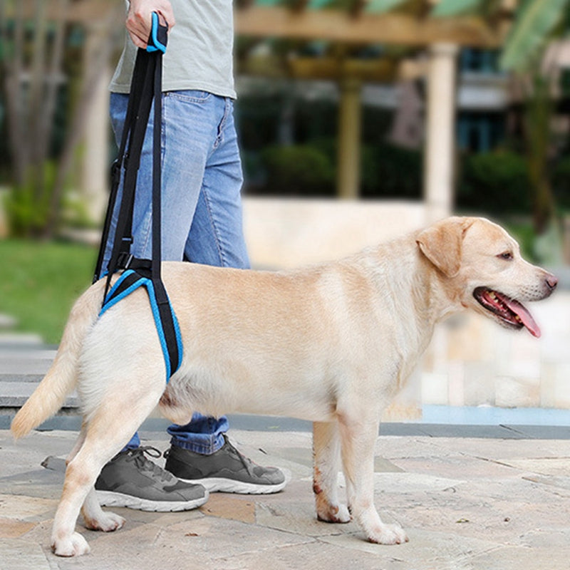 New Adjustable Dog Lift Harness For Back Legs Pet Support Sling Help Weak Legs Stand Up Pet Dogs Aid Assist Tool