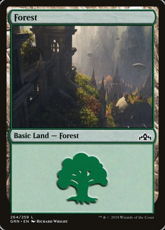 Forest [Guilds of Ravnica] | Eastridge Sports Cards & Games
