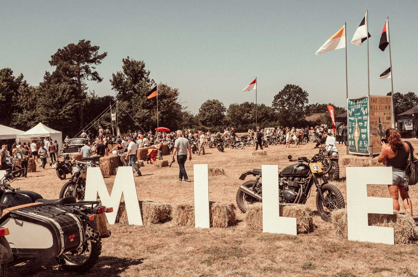 Provision & Co (P&Co) - The Malle Mile