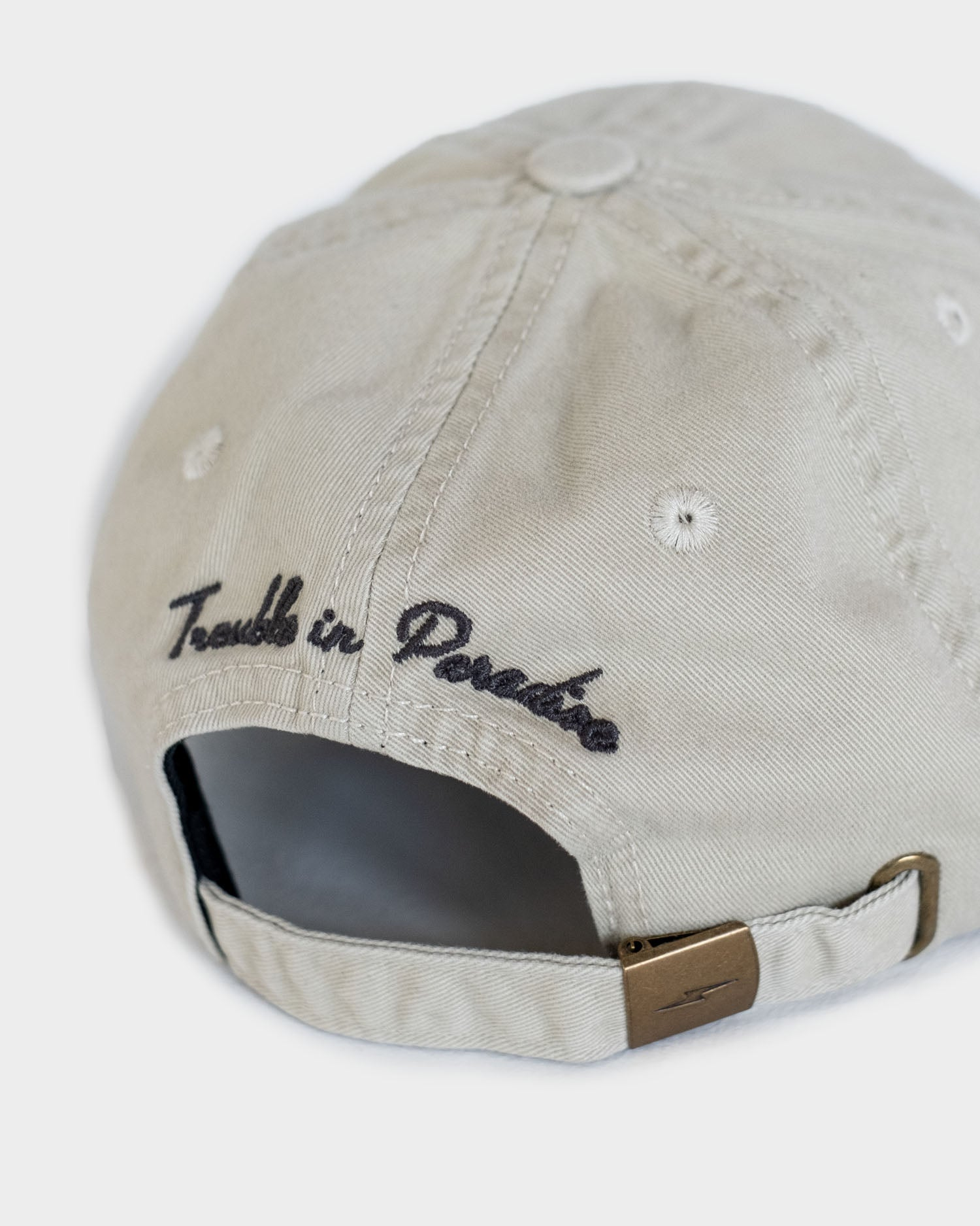 Trouble In Paradise Mens Stone 6 Panel Cap