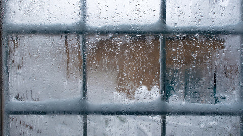 Why you need a dehumidifier in winter