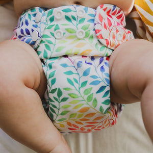 BERRY BOTTOMS MODERN CLOTH NAPPIES