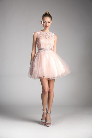 Beaded Lace Tulle Short Dress
