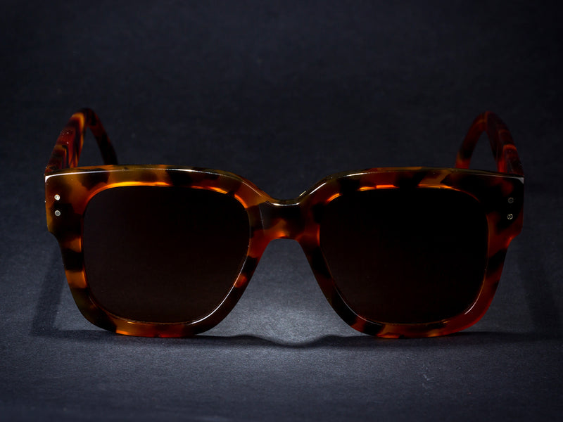 Sunglasses Model D.B. Tortoise Limited. Down 2019 - Open 2020. By Wilde.