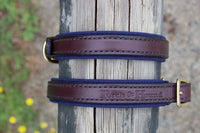 Dog collar - Havana/Navy