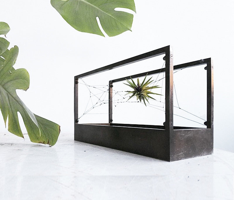 Black Patina Air Terrarium