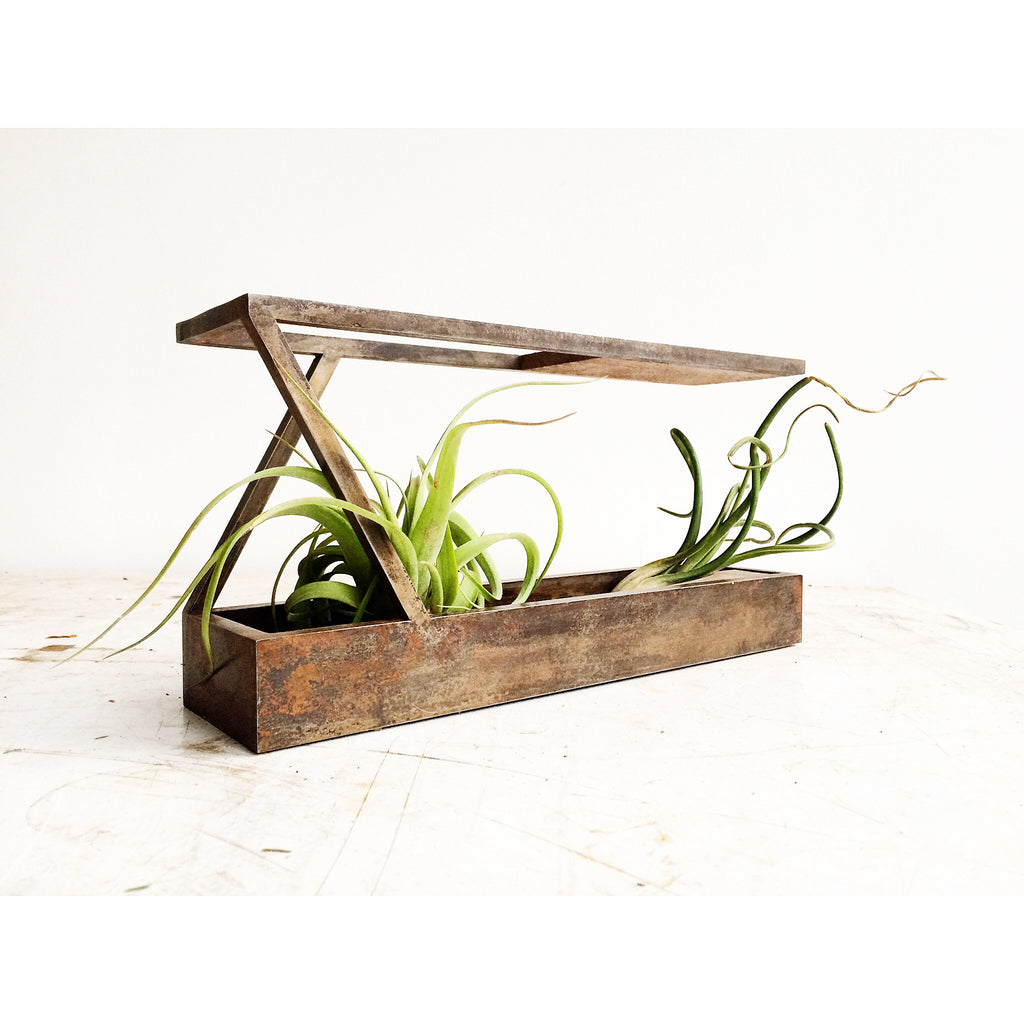 MINI II - Mobius Terrarium - Corten Steel Finish