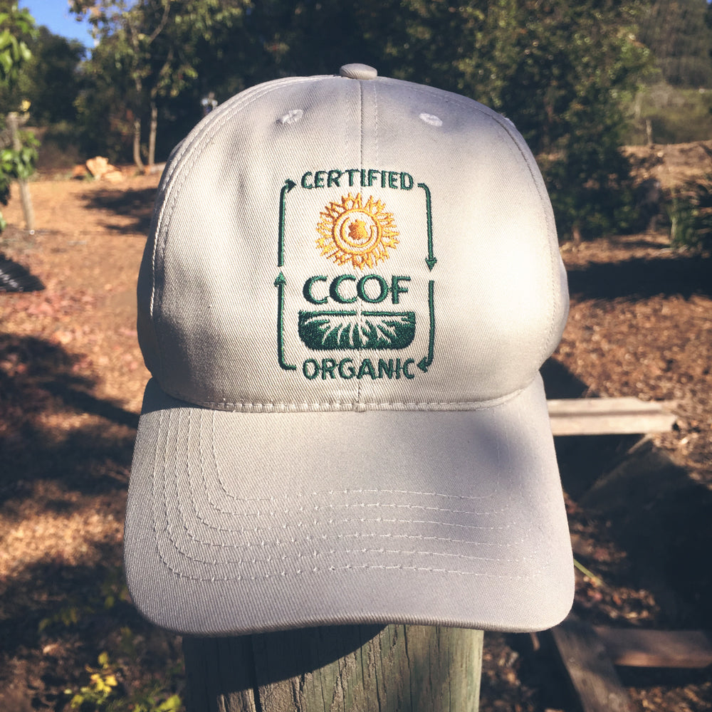CCOF Baseball-Style Embroidered Logo Hat