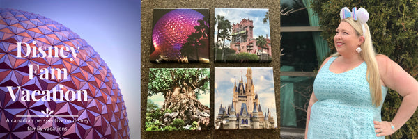 Disneyfamvacation Logo and Prints